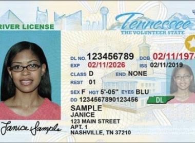 TN Driver's License