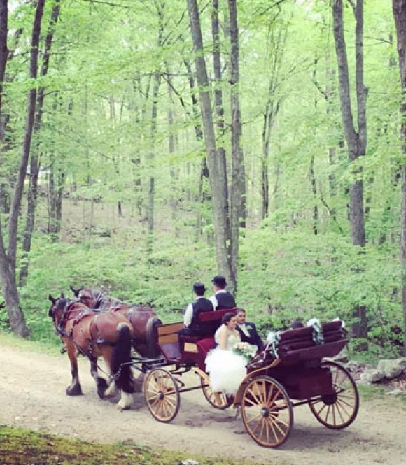 K & S Farm Horse Drawn Carriages